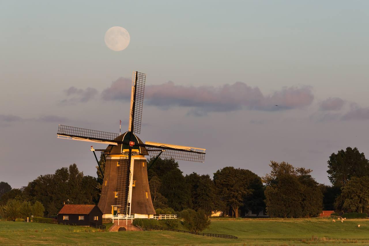 full moon over windmill
