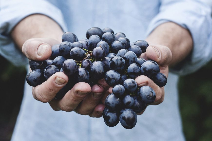 fruit-of-the-spirit-grapes