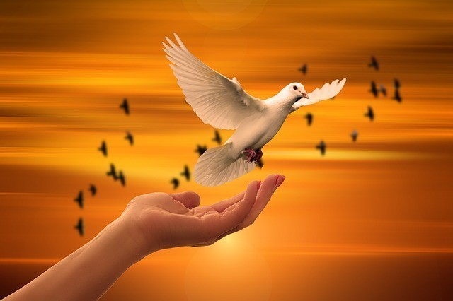 dove-holy-spirit