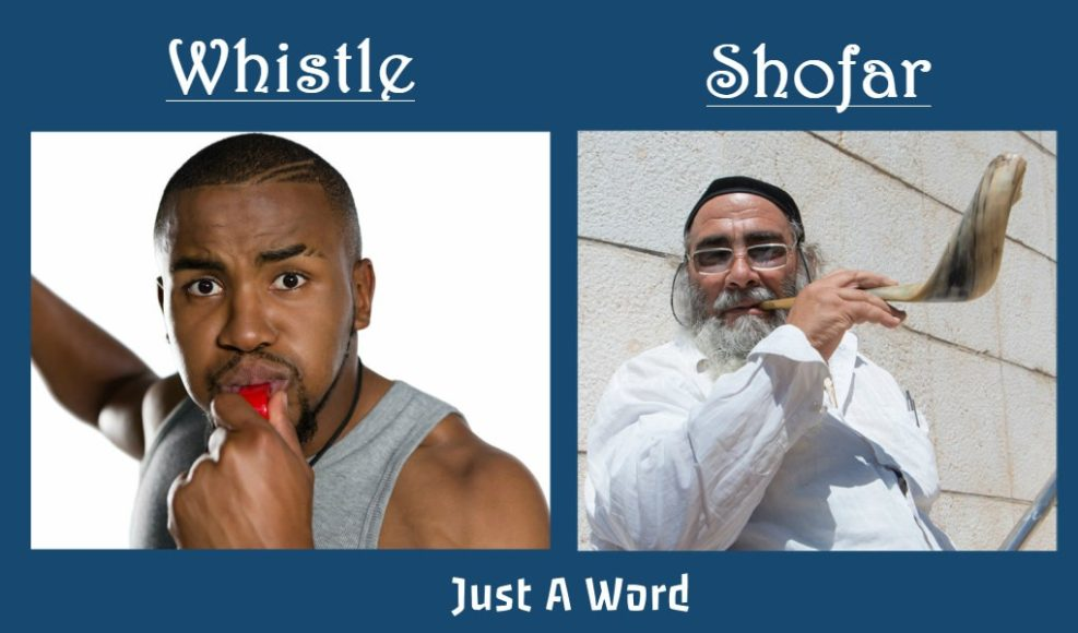 whistle - shofar