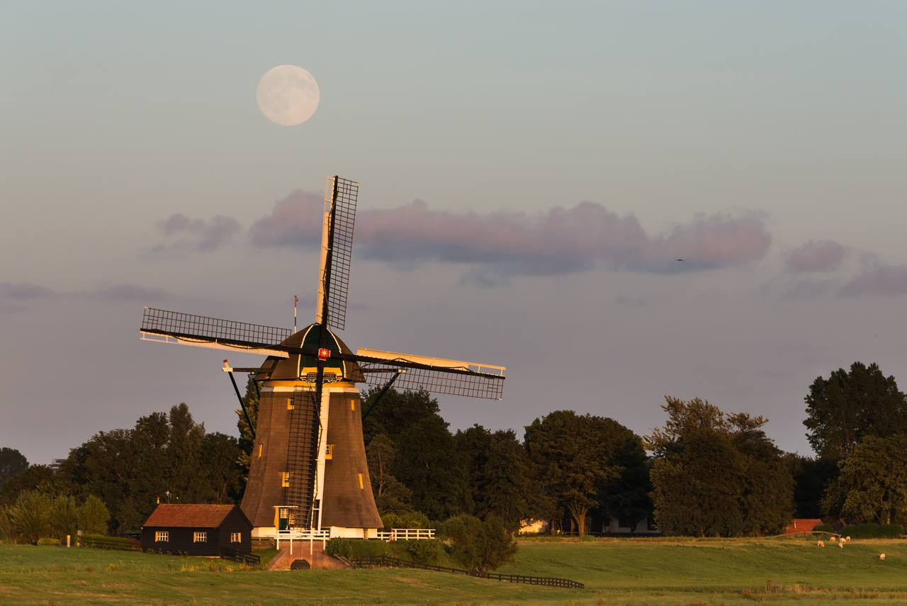 full moon over windmill