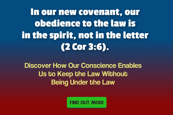 how our conscience enables us to keep the law banner 700x468